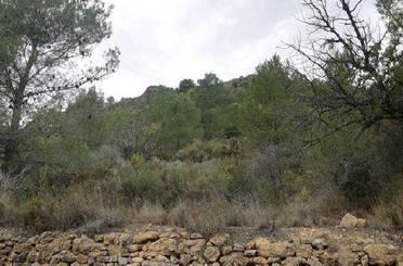 Grundstücke zum verkauf in Rocha Planta, Poligono 4 Parcela 194, Azuébar