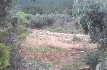 Terreno en venta en Tierra de Secano.partida Balsa Blanca, Sierra Engarcerán