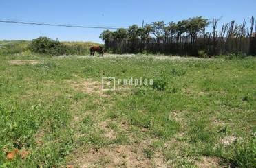 Terreno en venta en Valdeolmos-Alalpardo