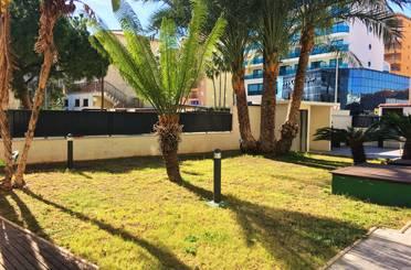 Apartamento de alquiler vacacional en Calle Cibeles, 34, Gandia