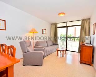 Apartamento de alquiler vacacional en Juan Llorca, 1, Benidorm