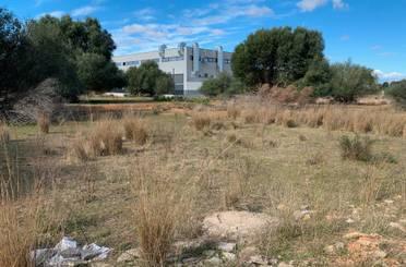 Terreno industrial en venta en Calle Toll la Alberca J, El Vedat - Santa Apolonia