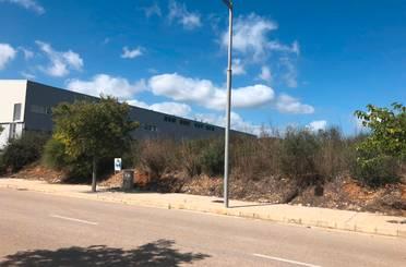 Fabrikhallen zum verkauf in Busqueret, Alcúdia