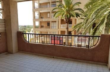 Apartamento en venta en Les Palmeres