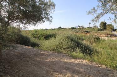 Terreno en venta en Valle de Losa