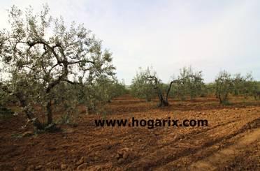 Terreno en venta en Binaced
