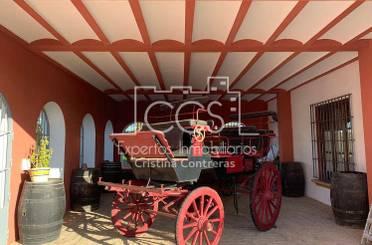 Finca rústica de alquiler en Alcalá de Guadaira