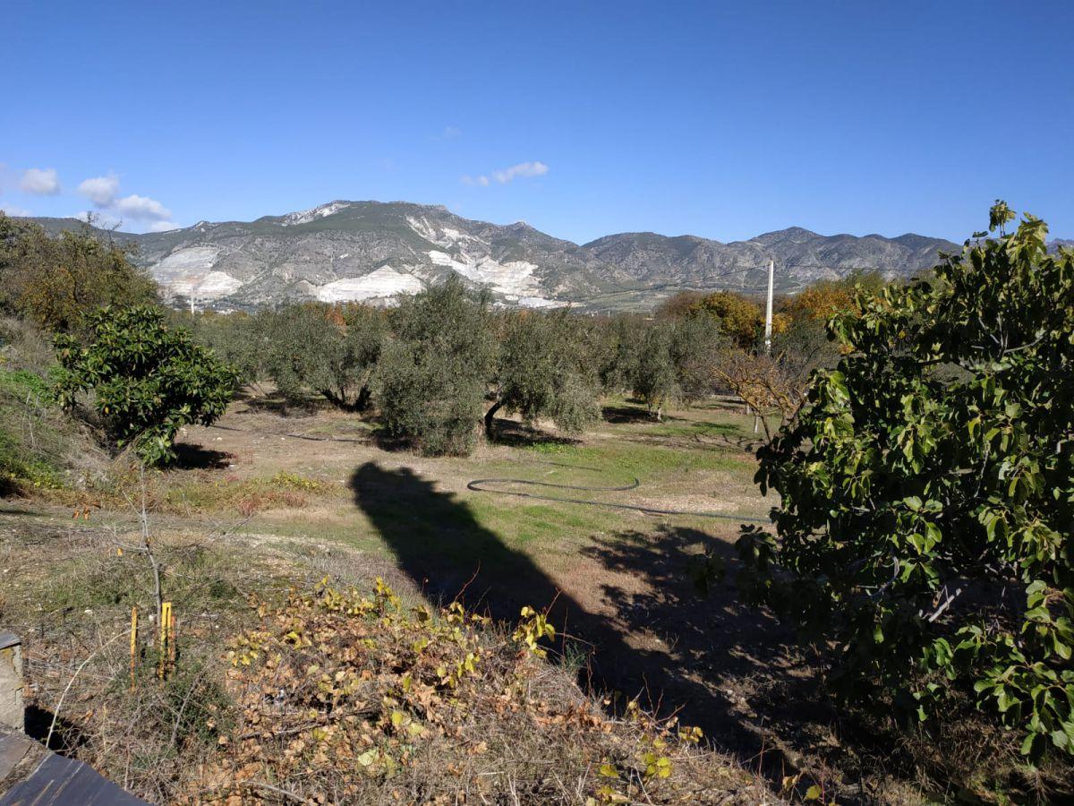 Terreno en venta en Albuñuelas